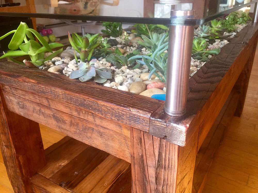 Succulent Coffee Table. Succulent Bedside Table. Wooden Tree Coffee Table